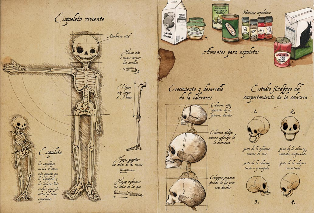 http://www.mercelopez.com/files/gimgs/58_esquelet6.jpg
